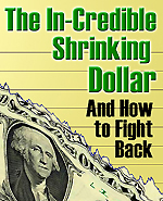 The In-credible Shrinking Dollar